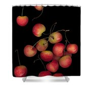 Cherries Multiplied Shower Curtain