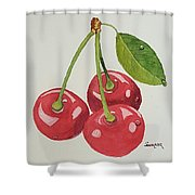 Cherry Times Three Shower Curtain