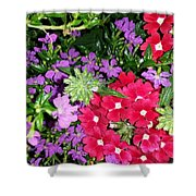 Cherry And Grape Shower Curtain