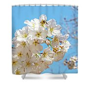 Cherry Blossom And A Bee Shower Curtain