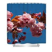 Cherry Blossom Flowers Shower Curtain
