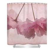 Cherry Blossom Froth Shower Curtain