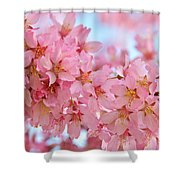 Cherry Blossom Pastel Shower Curtain