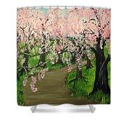 Cherry Blossom Walk Shower Curtain