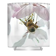 Cherry Blossom With Bee Shower Curtain
