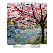 Cherry Blossoms And Bridge 3 201730 Shower Curtain