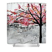 Cherry Blossoms And Bridge Meadowlark Botanical Gardens 201728 Shower Curtain