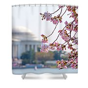 Cherry Blossoms And Jefferson Memorial Shower Curtain