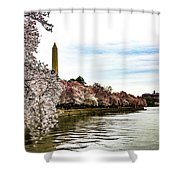 Cherry Blossoms In Bloom Shower Curtain