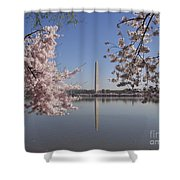 Cherry Blossoms Monument Shower Curtain