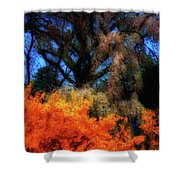 Cherry Blossoms P4 Shower Curtain