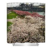 Cherry Blossoms Trees Along Portland Waterfront Shower Curtain