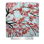 Cherry Blossoms V 201631 Shower Curtain