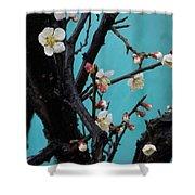 Cherry Branch Shower Curtain