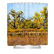 Cherry Creek Pond In Autumn Shower Curtain