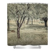 Cherry Orchard In Infrared Shower Curtain