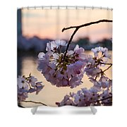 Cherry Pedals Shower Curtain