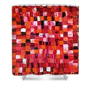 Cherry Pie Shower Curtain