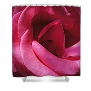 Cherry Pink Shower Curtain