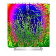 Cherry Rainbow Shower Curtain