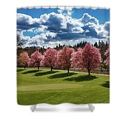 Cherry Tree Bloom Color Shower Curtain