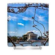 Cherry Tree Buds Shower Curtain