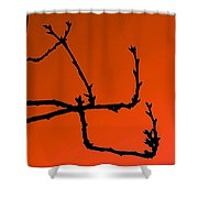 Cherry Tree Buds Shower Curtain