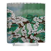 Cherry Tree Rich In Flowers Shower Curtain