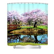 Cherry Trees In The Park Shower Curtain