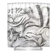 Chershire Cat  Shower Curtain