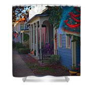 Chesapeake City Too Shower Curtain