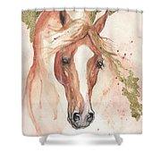 Chestnut Arabian Horse 2016 08 02 Shower Curtain
