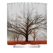 Chestnut Shower Curtain