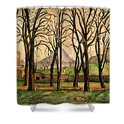 Chestnut Trees At The Jas De Bouffan Shower Curtain by Paul Cezanne
