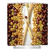 Chestnuts Grapes Wallnuts Shower Curtain