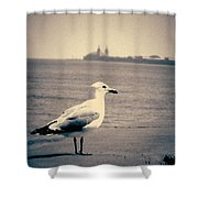 Chicago Seagull Shower Curtain