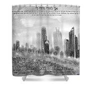 chicago skyline Ketubah Shower Curtain