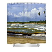 Chichirivihe Bay Shower Curtain