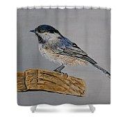 Chickadee Bird Shower Curtain