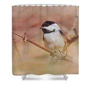 Chickadee In Spring Shower Curtain