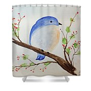Chickadee On A Branch With Leaves Shower Curtain