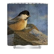 Chickadee Winter Perch Shower Curtain