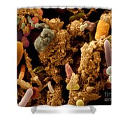 Chicken Droppings Shower Curtain