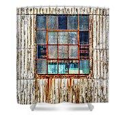 Chicken Wire Window Shower Curtain