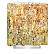 Chickory N Wheat W C Shower Curtain
