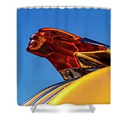 Chief Flying Cloud Shower Curtain