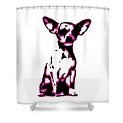 Chihuahua In Pink Shower Curtain