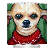 Chihuahua In Red Sweater - Boss Dog Shower Curtain