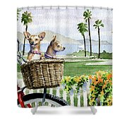 Chihuahuas In A Bike Basket Shower Curtain