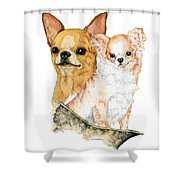 Chihuahuas Shower Curtain